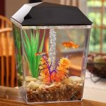 AquaView 1-Gallon Aquarium Tank Starter Kit $10