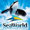 SeaWorld - Buy One Get One 50% off Tickets to Orlando, San Diego, & San Antonio