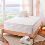 Spa Sensations 4'' Memory Foam Mattress Topper, Multiple Sizes, from $69