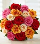 1800Flowers - 18-Count Multi-Colored Roses $15 (VISA Checkout)