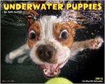 Underwater Puppies 2015 Wall Calendar $3.74
