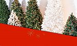 $55 Off $100 on Christmas Trees, Lights and Decorations