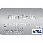 Visa $300 Gift Card $298.95