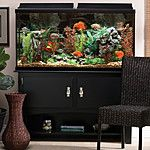 Marineland 60-Gallon Heartland Aquarium Ensemble $125 + pickup