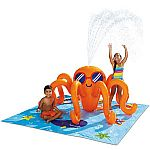 Play Day Octopus Play Center Swimming Pool $15 and more