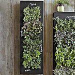 Extra 20% off Vertical Gardening