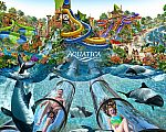 Aquatica Orlando - 50% off Weekday Ticket