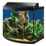36 Gallon Aqueon Deluxe Aquarium Kit $90 (Petsmart Pickup)