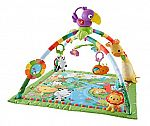 Fisher-Price: Rainforest Melodies and Lights Deluxe Gym $30 and More