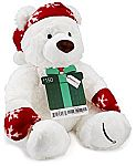$150 Amazon.com Gift Card with a Holiday Teddy Bear - Limited Edition