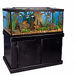 Marineland 75 Gallon Aquarium Majesty Ensemble $169 (was $500)