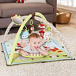 Skip Hop Activity Gym, Woodland Friends $34 Shipped