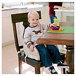 Graco Blossom Booster Seat $15