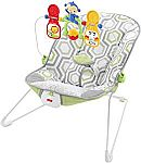 Fisher-Price Baby's Bouncer, Geo Meadow $18.79