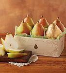 6 Piece Harry and David Royal Riviera Pears  $10 Shipped