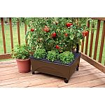 "EMSCO Group 24""x20"" Resin Raised Patio Garden Bed w/ Casters $19.98 (Saving $10)"