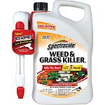 Spectracide Weed & Grass Killer2 (AccuShot Sprayer) $5.99 (Add-On)
