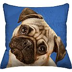 "18""x18"" Pet Themed Throw Pillow Clearance from $2"