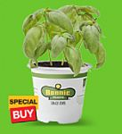 """Home Depot - 50% Off 4.5""""/5"""" Bonnie Vegetables and Herbs (In store, today only)"""