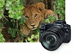 (New Release) Canon EOS R 30.3MP Full-Frame CMOS Sensor Mirrorless Digital Camera from $2299 (Pre-Order)