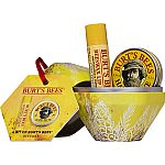 Bit Of Burt's Beeswax Gift $2.99 + Free Shipping and more