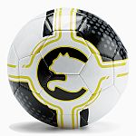 PUMA Procat Soccer Ball from $4.99 (orig. $15-$20)