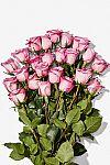 2-Dozen Whole Trade Roses $20 (Amazon Prime members only)
