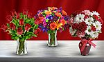 Blooms Today - $40 Value with Shipping Included  $16, ProFlowers and Shari's Berries - $30 Value $13, and more