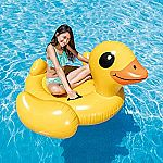 """Intex Pool Inflatable: Duck (58"""" X 58"""" X 32"""") $9.97 & More"""