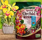 4 Qt Sun Bulb 50000 Better Gro Special Orchid Mix $3.97