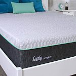 "Sealy 12"" Hybrid Spring & Memory Foam Mattress (Medium Firm) Queen $399.50, Twin $333"
