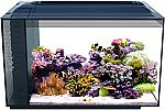 Fluval 13.5-Gallon Sea Evo Saltwater Fish Tank Aquarium Kit $101 (Was $160)