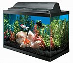 Aqueon Aquarium Kit 10 Gallon $38